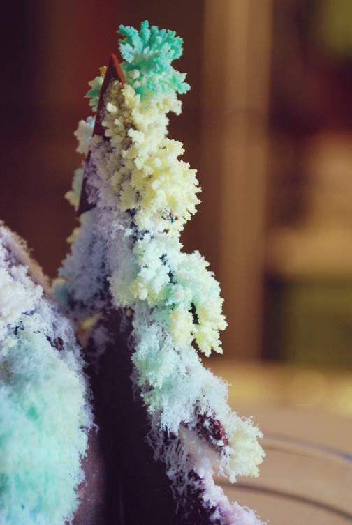 20 Best Images About Salt Crystals On Pinterest Led