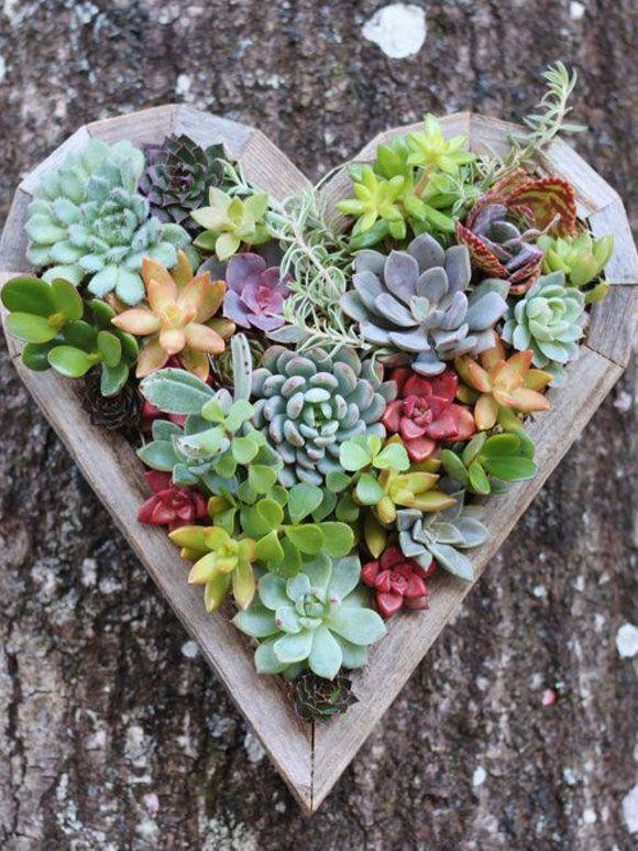 Decoreren met mini vetplantjes - My Simply Special