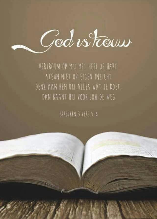 Spreuken 3 : 5-6