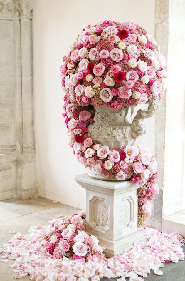 Roses roses everywhere... Catherine Mead Photography