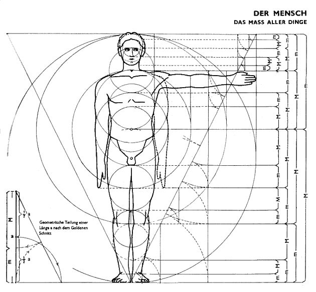 100 IDEAS THAT CHANGED ARCHITECTURE #22 IDEAL: The Ideal Normative Body: Ernst Neufert, 1936 - Form, Proportion, Symmetry.  Using the human body to derive geometrical shapes that are perceived as ideal.