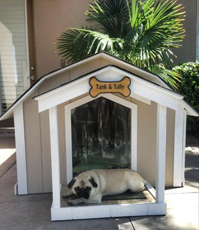 Best 25+ Heated dog house ideas on Pinterest | Amazing dog ...