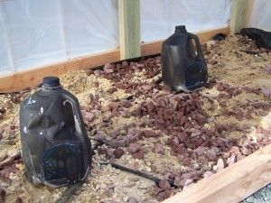 Some milk jugs spray painted black and almost filled with water were placed inside. These will absorb heat during the day and help keep the temperature up overnight.  Gardening Jones » How to Build a Mini Greenhouse pt.3