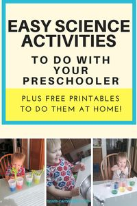 Easy Preschool Science {Vol. 1} - Team Cartwright Science activities for toddlers and preschoolers. Celery coloring, color mixing, and marshmallow activities