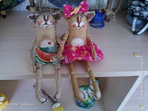 Влюбляшки котяшки фото 1