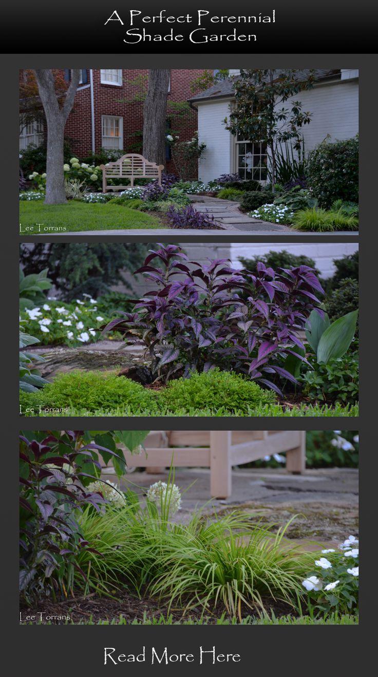 729 Best Lee Ann Torrans Texas Gardening Images On