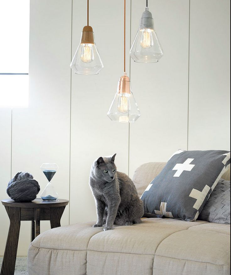 these modern drop lights in copper, silver and bronze look great...even the cat…