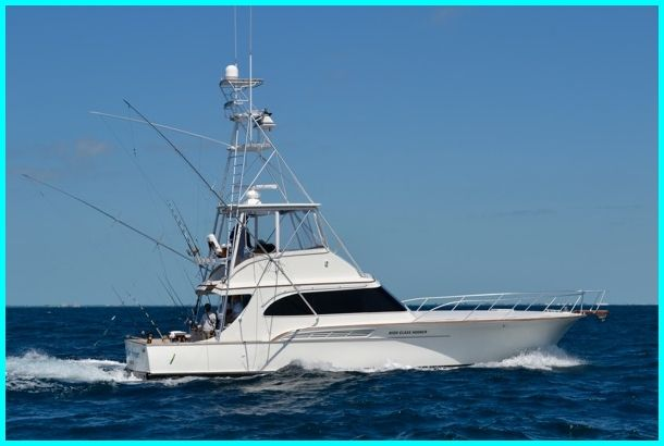 25 best ideas about deep sea fishing on pinterest for Deep sea fishing key west florida