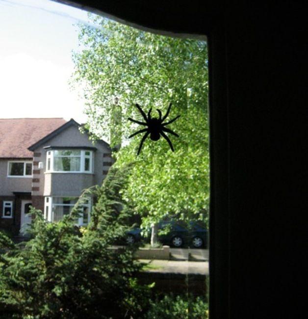 Stickers – Scary Spider Wall Sticker Decals, Arachnophobia – a unique product by Jolyon_Yates via en.dawanda.com