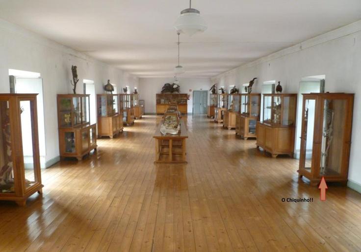 Museu, Instituto de Odivelas
