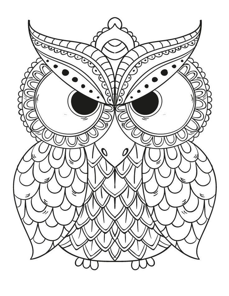 42 best coloriages de hiboux pour adulte owl adult coloring pages images on pinterest adult - Coloriage gratuit pour adulte ...