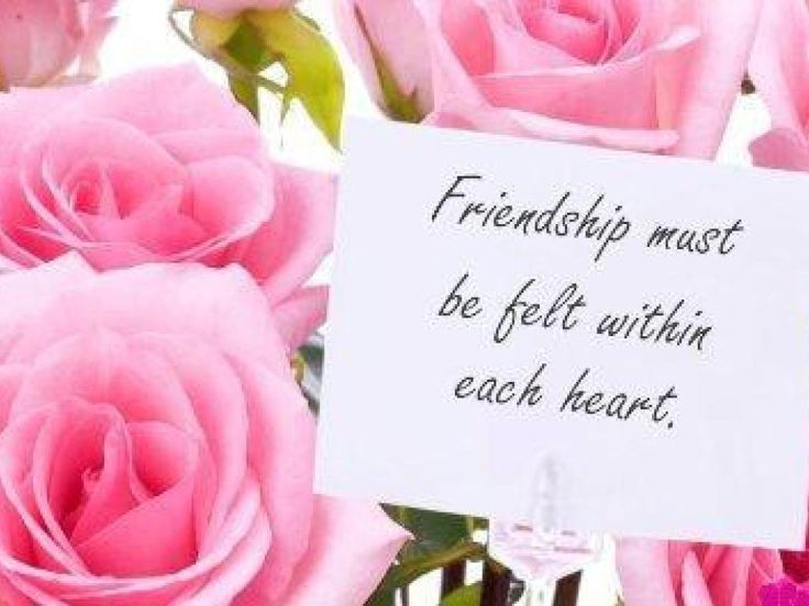Friendship | Friends ! – Friendship Wallpaper (13105415) – Fanpop fanclubs… bebcc05280be277e8adb641aacf60afd  cute friendship quotes friendship images