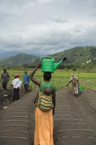 Congo: Chased from home but feeding our families | Mennonite Central Committee U.S.