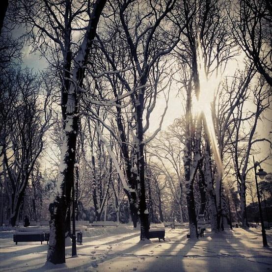 #belgrade #kalemegdanpark #travelbyphone #emilijagasic