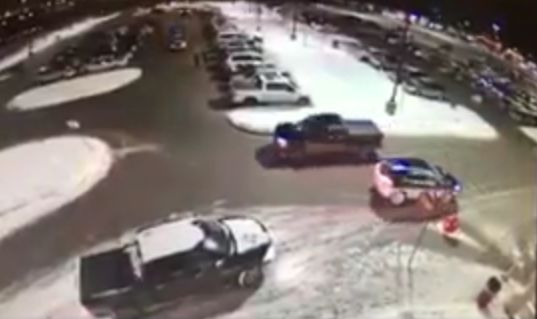 Allen Park Attempted Purse Snatching Caught on Camera [Video]