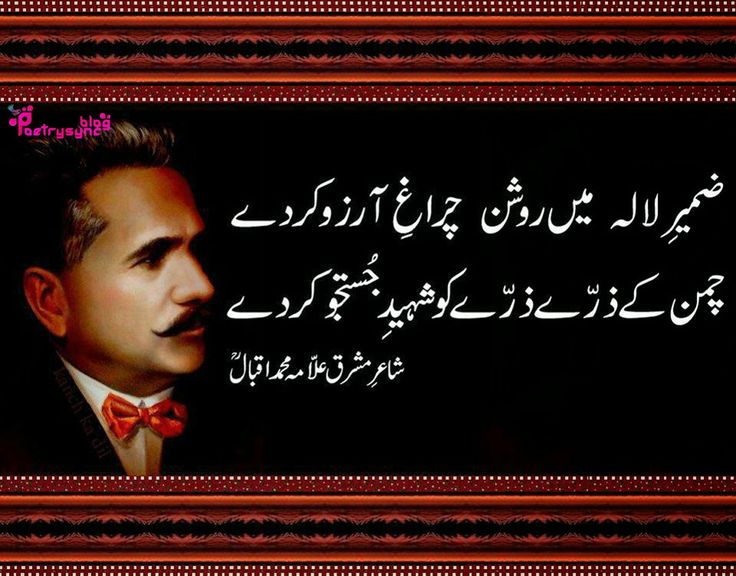 essay allama iqbal in urdu language I think allama iqbal is the person whoo can be called my hero  poetry in urdu  and persian but he is thought to be the greatest urdu poet of.