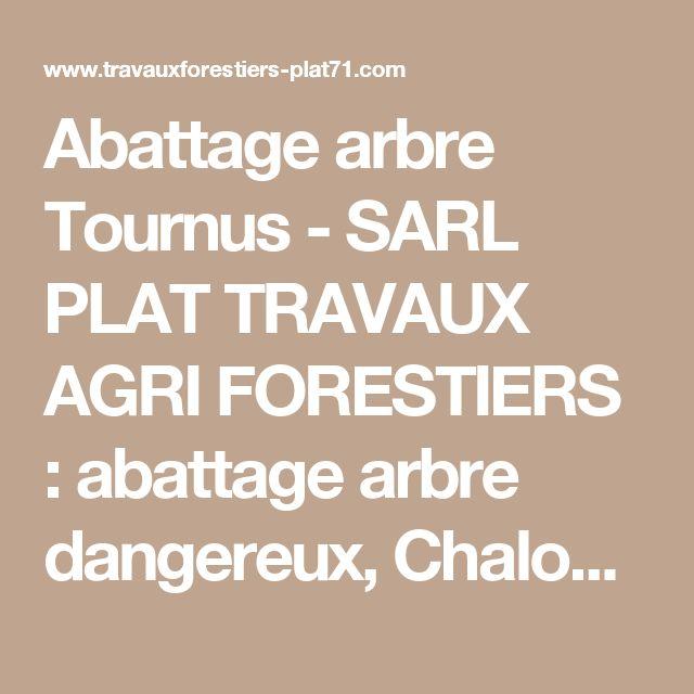 Abattage arbre Tournus - SARL PLAT TRAVAUX AGRI FORESTIERS : abattage arbre dangereux, Chalon-sur-Saône, Buxy, Louhans, abattage des arbres, bois de chauffage, broyage de haies