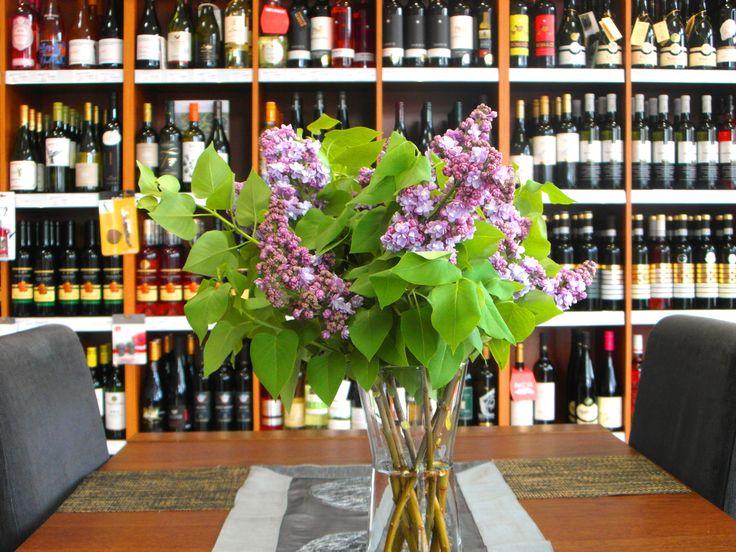Nádherný orgován nám skrášľuje priestor ... ... www.vinopredaj.sk  #jar #orgovan #spring #vinoteka #inmedio #delishop #delikatesy #kvety #kvet #wineshop #flowers #slovakia #slovak #slovensko