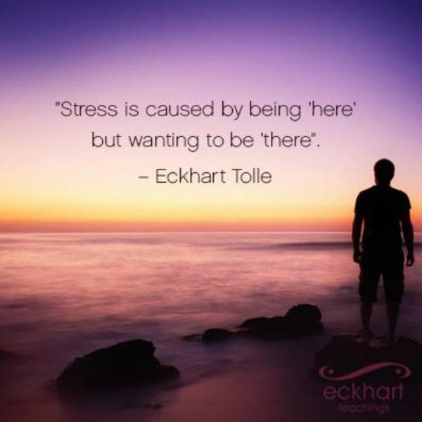 Stress is caused by being 'here' but wanting to be 'there' ⊰❁⊱ Eckhart Tolle