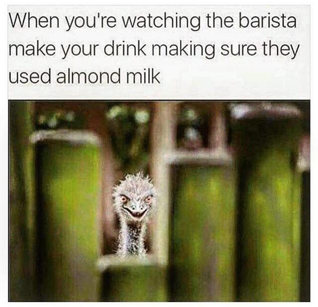 When you're watching the barista make your drink making sure they used almond milk / vegan meme / vegan humor / vegan lifestyle