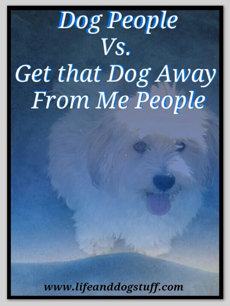 Dog People vs. Get that Dog Away From Me People #dogs #blog