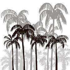 Risultati immagini per silhouette palma tropicale