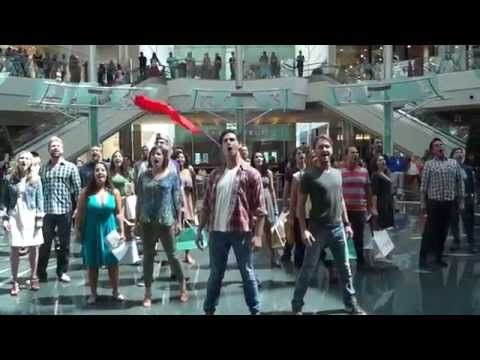 Flash Mob in Orlando's Mall at Millenia - Les Mis.   It's worth the three and a half minutes.  :) :)
