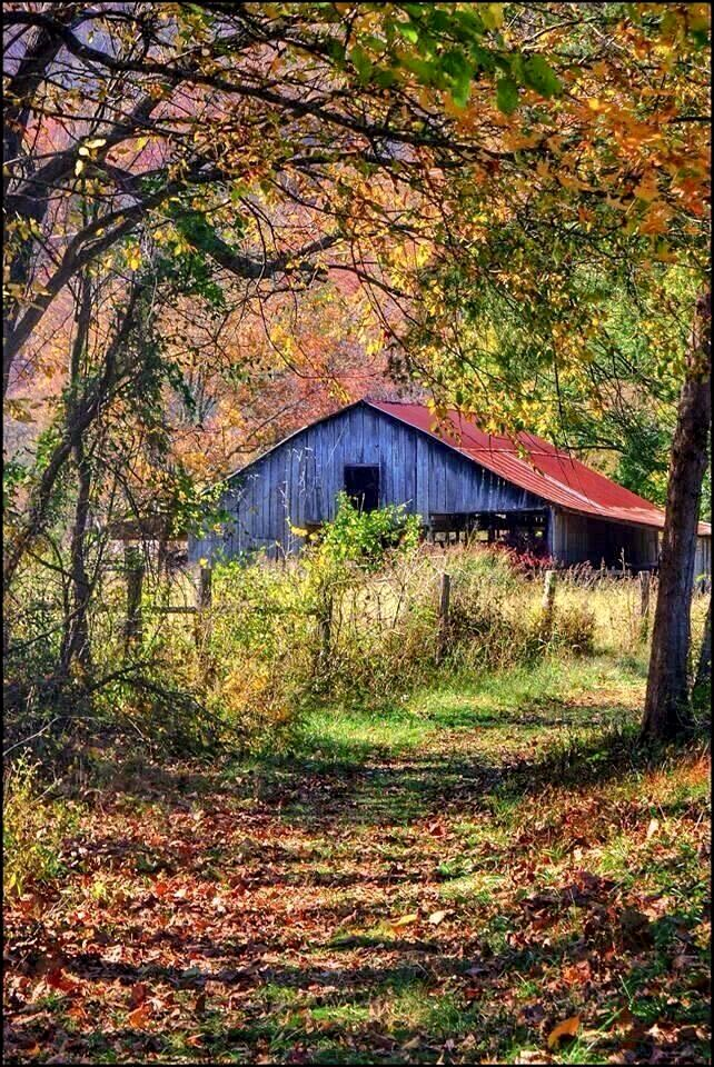 Lane leading to an old barn [photographer and location unknown] cr.cl.