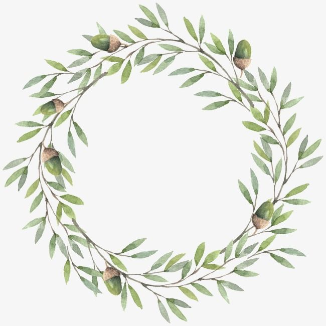 Wreath Hand Painted Green Leaves Png Transparent Clipart Image