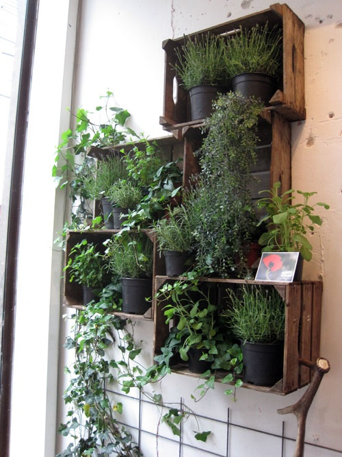 wood crate wall planters - LOVE!