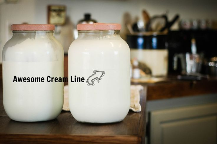 Ways to utilize and use up fresh milk. | The Elliott Homestead (Includes recipes for buttermilk, yogurt, kefir, cheeses, sour cream, etc.)