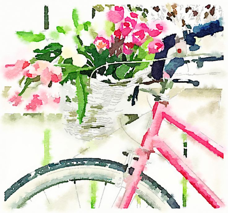 Bicycle and tulips, painted in #Waterlogue via @lisakadow.