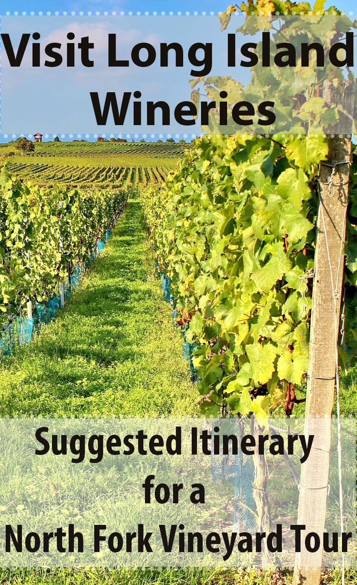 Visit Long Island Wineries - Suggested Itinerary for a North Fork Vineyard Tour