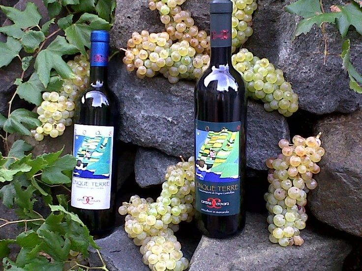 Winemaking has seen a resurgence among young locals in the past few years. Cantina Crovara in Manarola is one example.  They produce an excellent Cinque Terre DOC wine.  http://www.cantinacrovara.it/