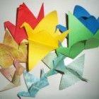 Voor de Japanners is de kraanvogels het symbool voor geluk en gezondheid. Er is een oude traditie dat wanneer iemand 1000 origami kraanvogels vouwt, z...