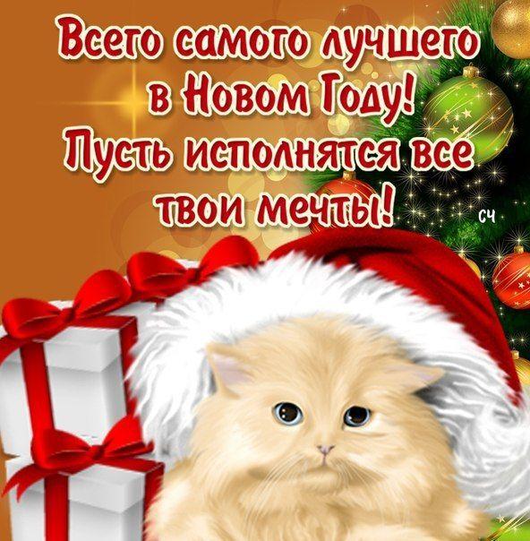изготавливаться жестким новогодние пожелания подруге короткие кот любит