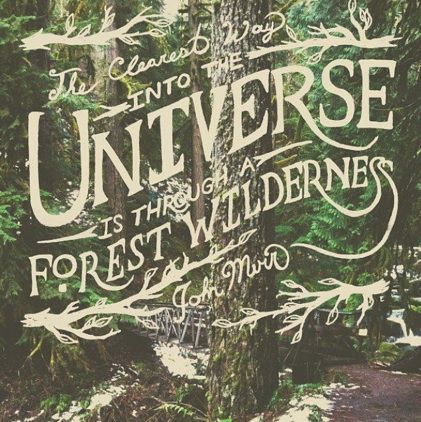 the clearest way into the universe is through a forest wilderness