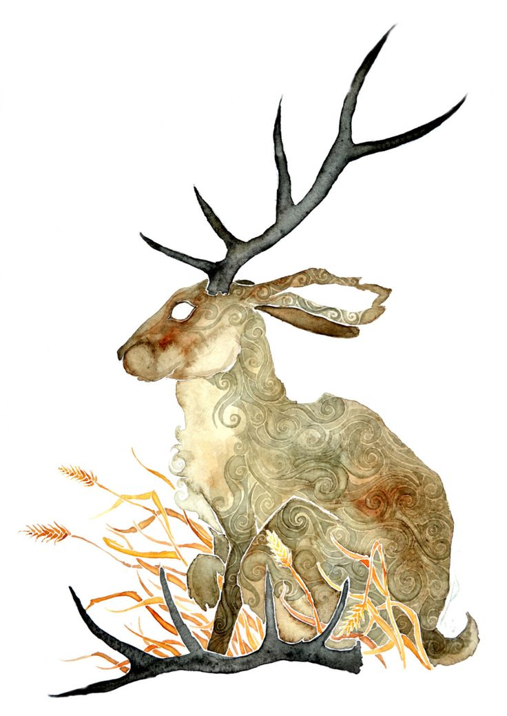 Shed Antlers -giclee PRINT  of original watercolor- by petesandker on Etsy https://www.etsy.com/listing/230650361/shed-antlers-giclee-print-of-original