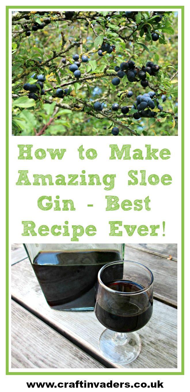 How To Make Sloe Gin >> Making Sloe Gin Best Sloe Gin Recipe Ever Alcohol Gin