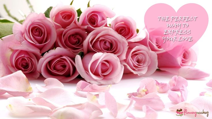 Love needs expression. And the best way is to present her with a bunch of pink roses.