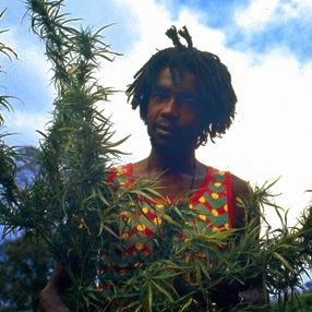 peter tosh   Peter Tosh   This Is Crucial Reggae