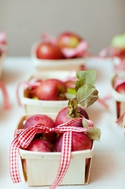 apples tied with gingham ribbon