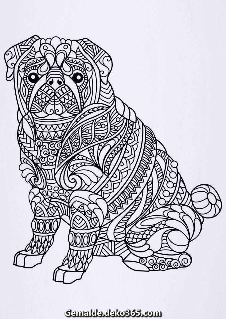 Erwachsenenfarbung51 Topkleurplaat Nl Horse Coloring Pages Dog Coloring Page Cat Coloring Page