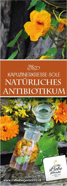 Alkoholfreie Tinktur mit Kapuzinerkresse! Ein natürliches Antibiotikum - ein Hausmittel für die Familie! Kräuter natürlich verwenden, Hausmittel Erkältung und Grippe!