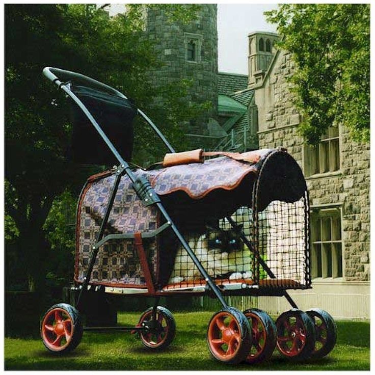 Kittywalk Royale Classic Stroller 26 X 13 X 16 Kwpsroycl
