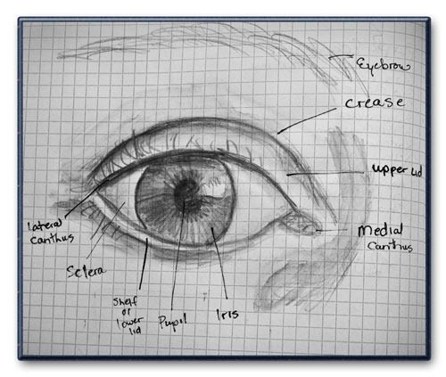 how to draw eyes.