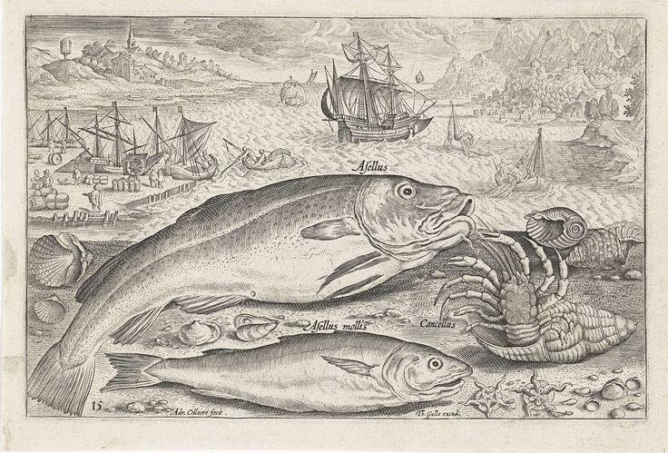 Adriaen Collaert | Twee vissen op het strand, Adriaen Collaert, 1627 - 1636 | Een kabeljauw, een wijting en een hermietkreeft liggen samen met wat schelpen aangespoeld op het strand. Op de achtergrond de zee en een havenkade. De prent maakt deel uit van een serie met vissen als onderwerp.