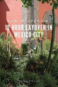 how to spend one day in Mexico City