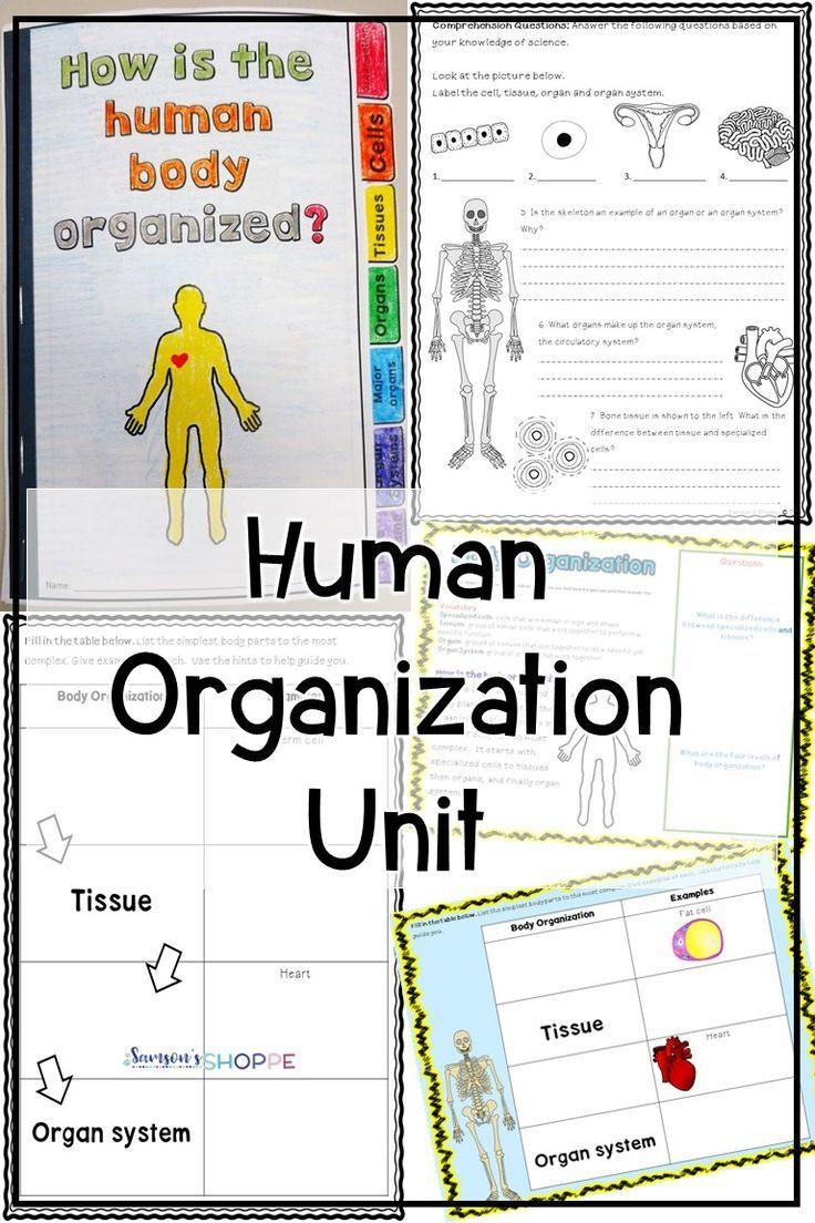 Human Body Organization Unit Human Body Worksheets Book Organization Life Science Activities