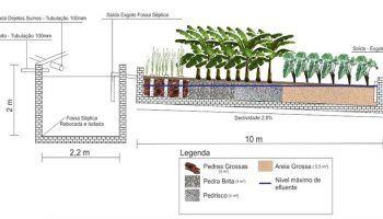 Ingeniero brasileño crea un sistema natural para el tratamiento de aguas residuales